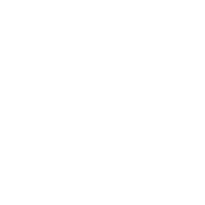 Partnerlogo-Designit